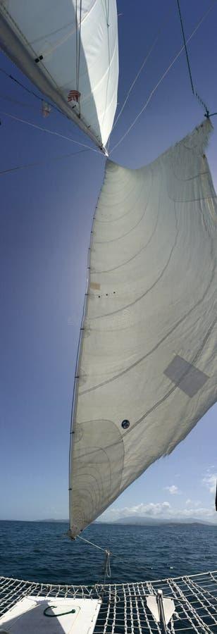 Giro della barca a vela al lobo immagini stock libere da diritti