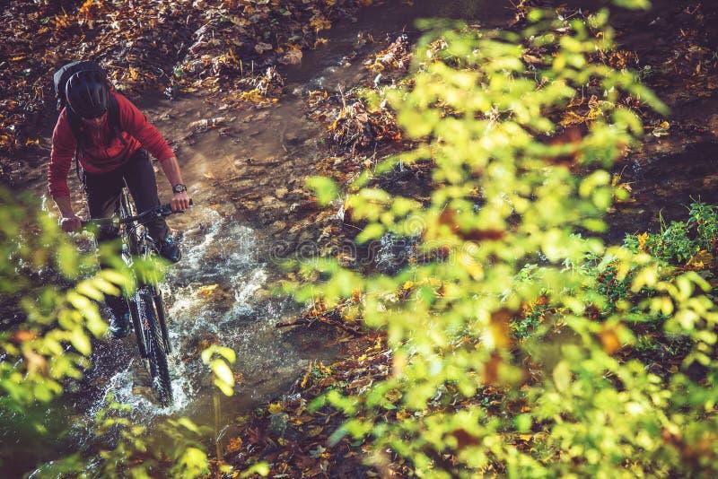 Giro della bici della regione selvaggia fotografie stock libere da diritti