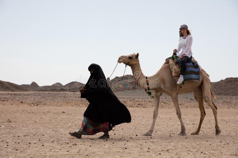 Giro della donna nella posizione del deserto del cammello fotografia stock libera da diritti