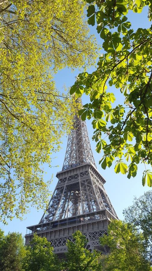 Giro Eiffel fotografia stock