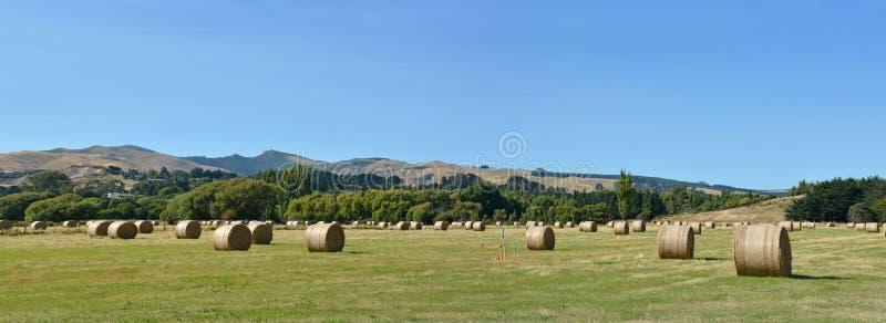 Giro Hay Bales a Tai Tapu Canterbury New Zealand immagine stock libera da diritti