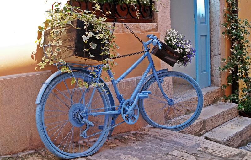 Giro sulla bici blu immagine stock