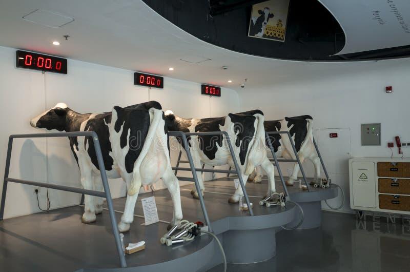 Giro turistico della fabbrica di fase 6 di industria lattiera di Mengniu fotografia stock libera da diritti