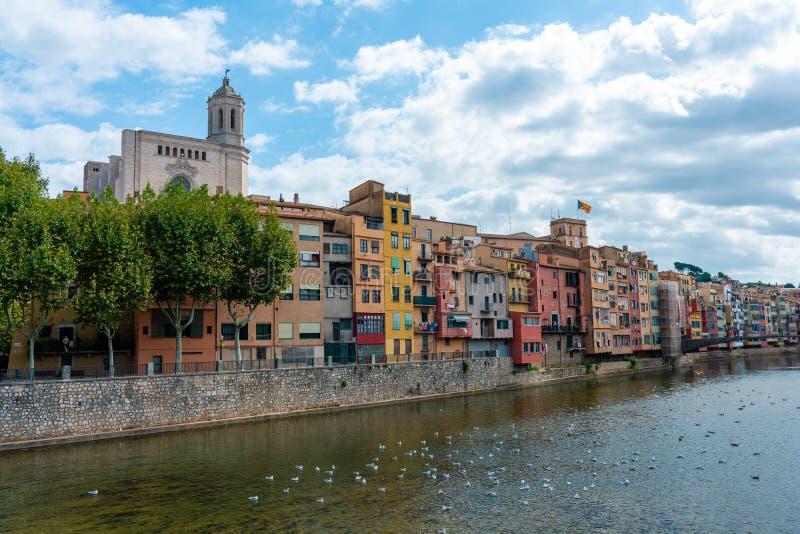 Girona-Kathedrale, Vögel auf dem Wasser und multi farbige Häuser von der Brücke auf dem Onyar-Fluss, Girona, Spanien lizenzfreie stockbilder
