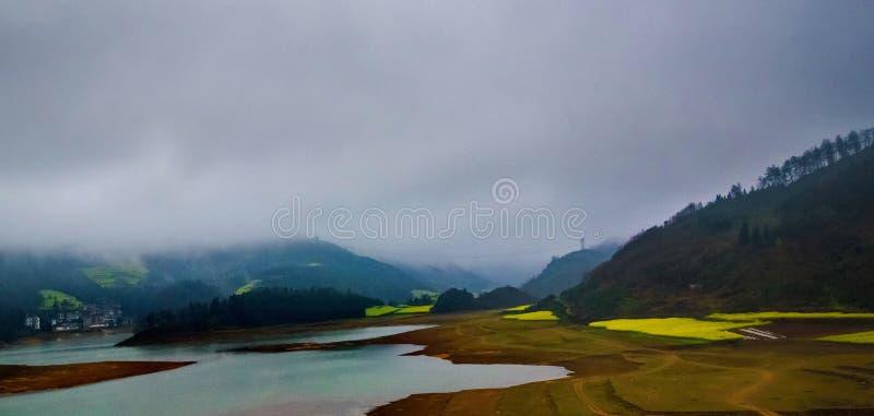 Download Gisement De Canola, Gisement De Fleur De Graine De Colza Avec La Brume Dans Luoping Photo stock - Image du fleuve, conduite: 87703004