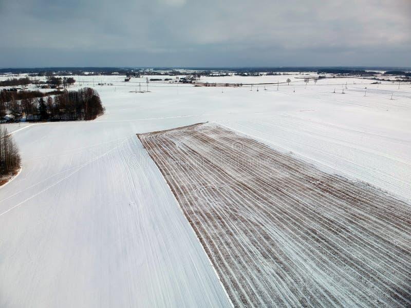 Gisement de chaume de blé de panorama de terres cultivables d'hiver, vue aérienne photo libre de droits