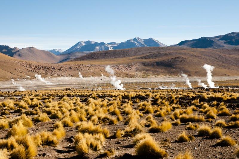 Gisement de geyser d'EL Tatio - Chili photo libre de droits