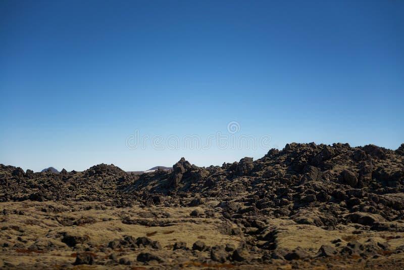 Gisement de lave de l'Islande couvert de la mousse verte images stock