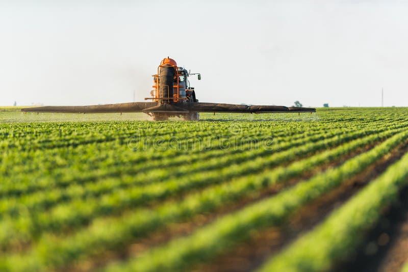 Gisement de pulvérisation de soja de tracteur au ressort photo stock