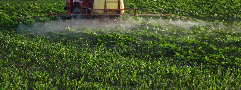 Gisement de pulvérisation de tracteur au printemps photos libres de droits