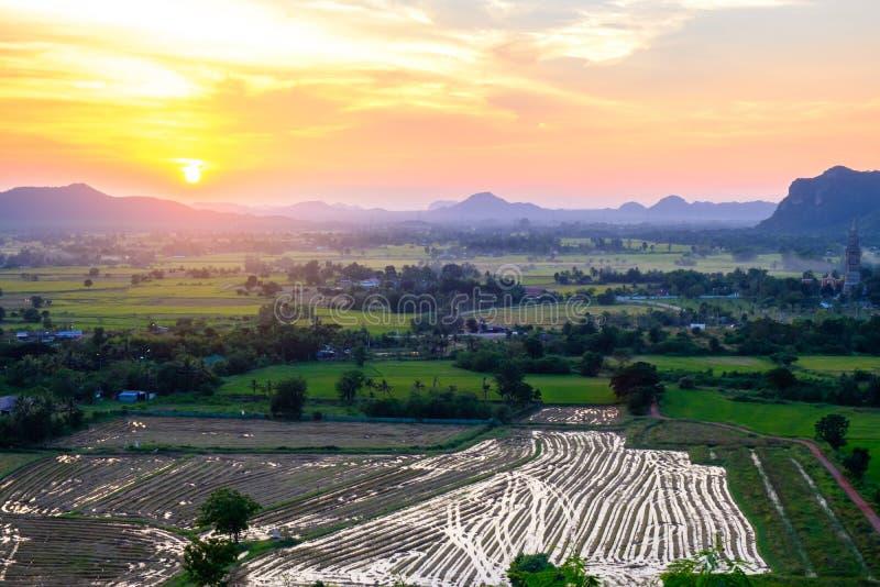 Gisement de riz avec le fond de coucher du soleil de montagne photos libres de droits