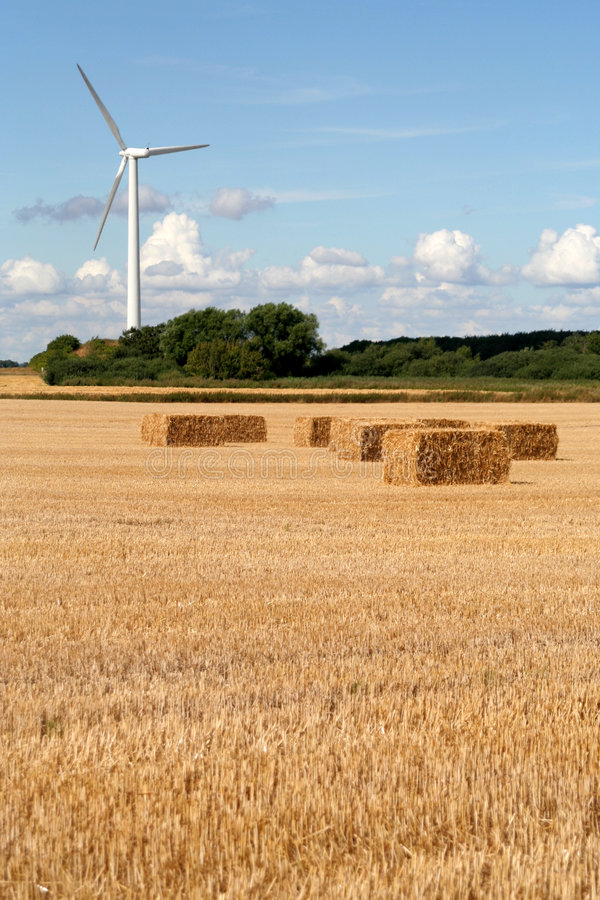 Gisement de turbine et de blé de vent image stock