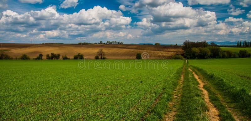 Gisement et ciel de chemin photos libres de droits