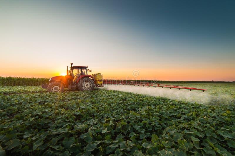 Gisement végétal de pulvérisation de tracteur au ressort image libre de droits