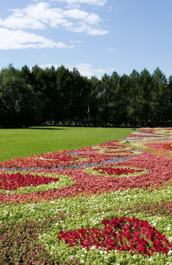 Gisements de fleur 2 photographie stock libre de droits