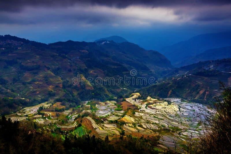 Download Gisements En Terrasse De Riz Dans Laohuzui Yuanyang Image stock - Image du zones, configuration: 87708663