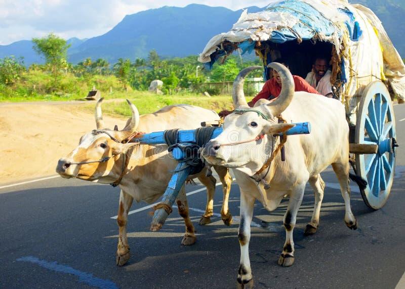 Gitans dans l'Inde du sud photographie stock libre de droits