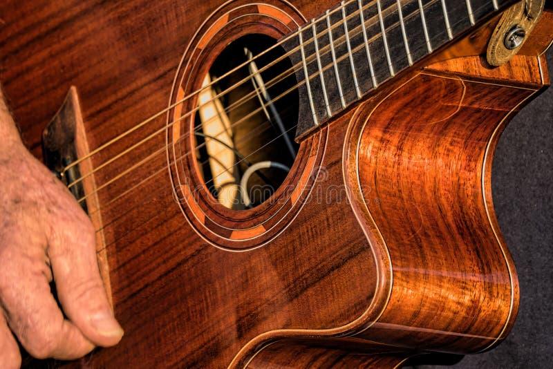 Gitara gracz przy rolnika rynkiem obraz royalty free