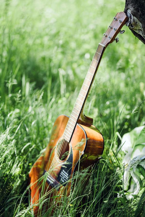 Gitara na pinkinie w parku zdjęcia stock