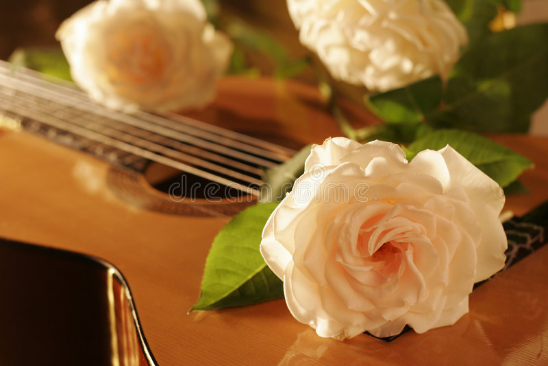 gitara rose zdjęcia stock
