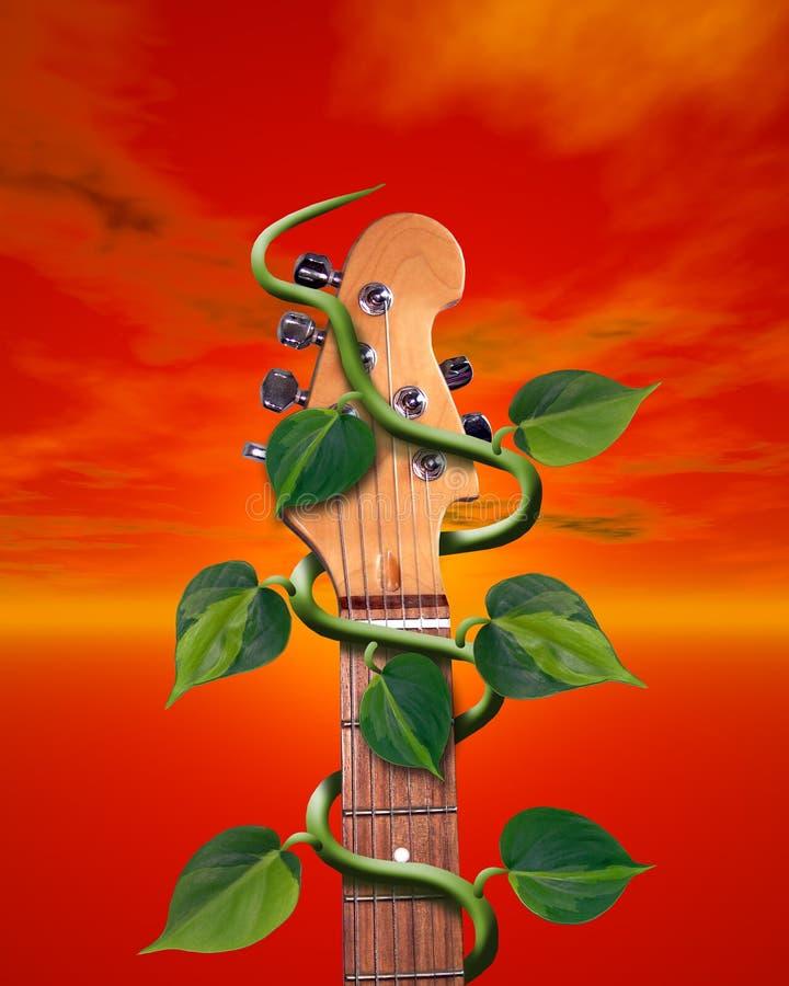 gitara winorośli ilustracja wektor