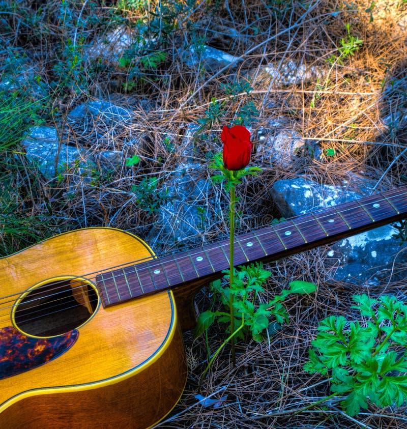 Gitarr och röd vallmo royaltyfri foto