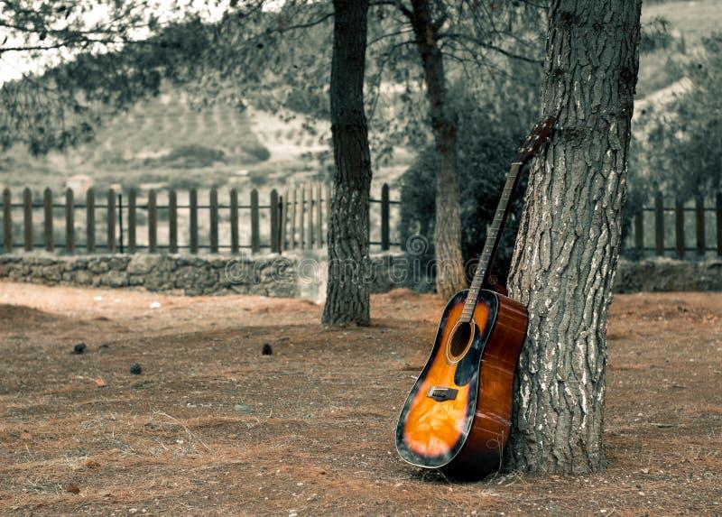 Gitarre, die draußen auf einen Baum und toten gelben Blätter auf dem GR legt lizenzfreie stockbilder