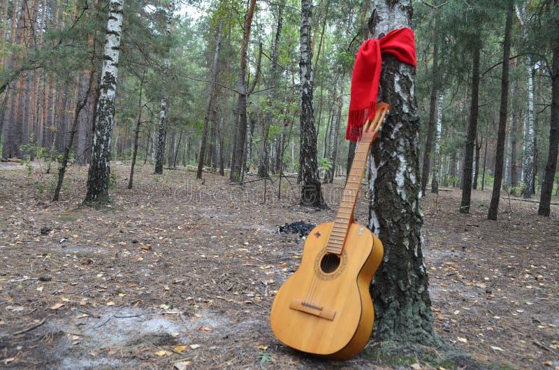 Gitarre mitten in dem Wald mit einem roten Schal herum gebunden stockbild