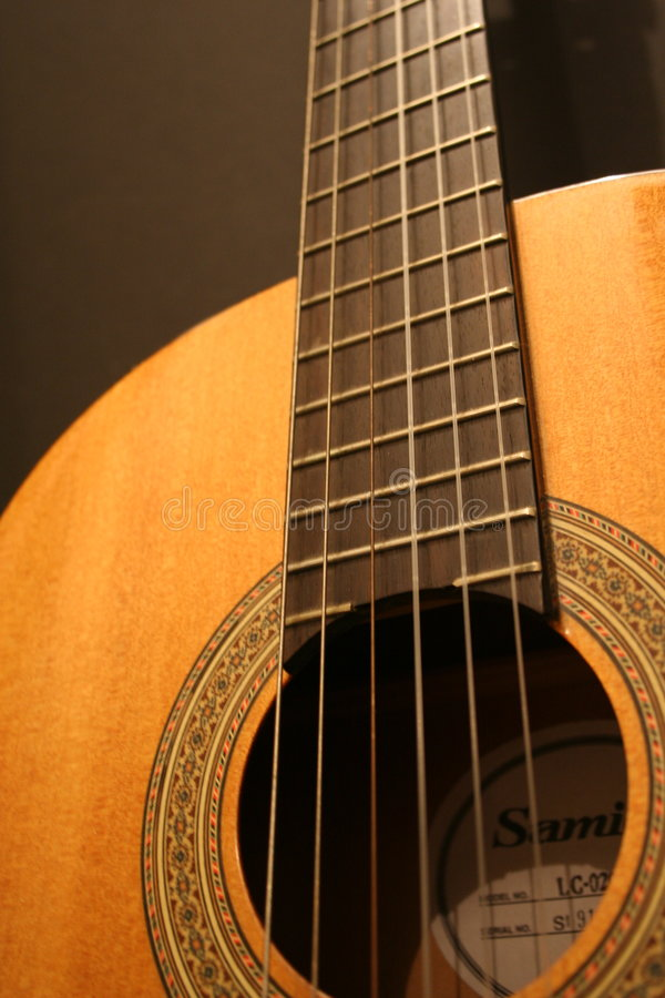Gitarre u. Zeichenketten lizenzfreies stockbild