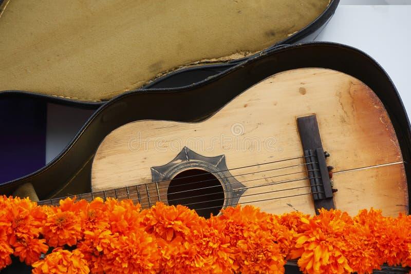 Gitarre und Blumen I stockfotografie