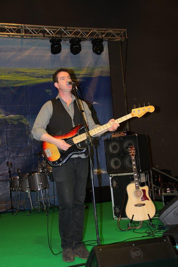 Gitarrspelaren av Kilkennys royaltyfri bild