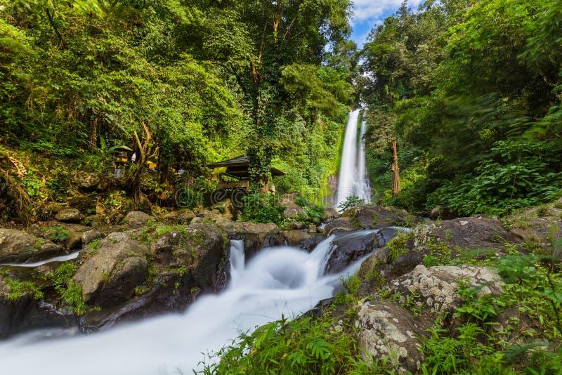 Gitgit Waterfall - Ilhas Bali, Indonésia foto de stock royalty free