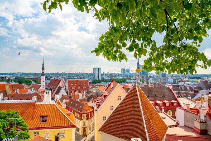 10 giugno 2018 Tallinn, Estonia fotografie stock