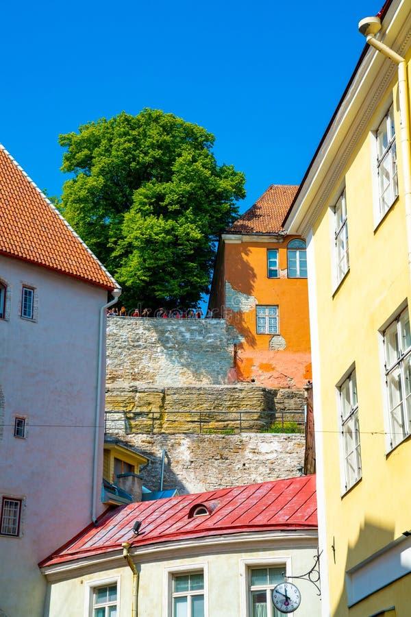 10 giugno 2018 Tallinn, Estonia fotografia stock libera da diritti