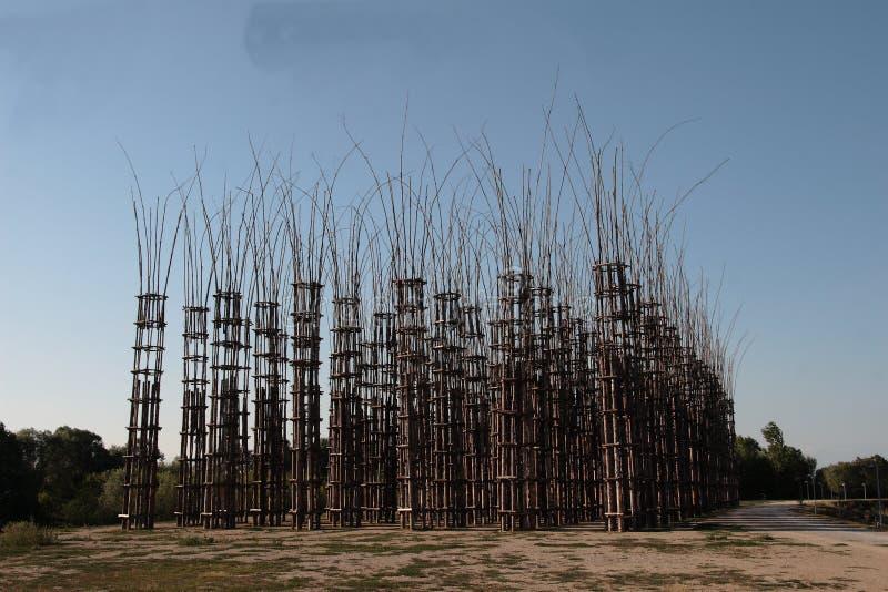 Giuliano Mauri warzywa katedra obrazy royalty free