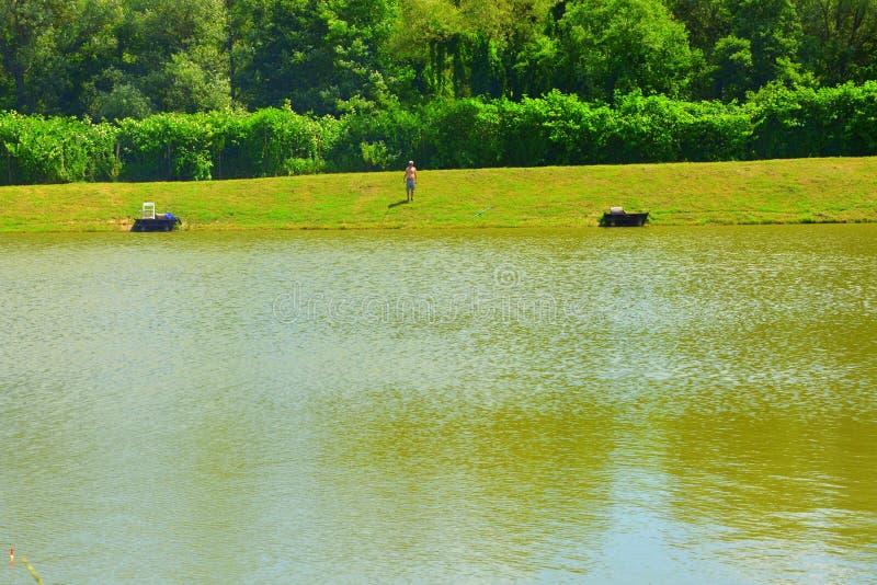 Giumenta di Aita del lago Paesaggio rurale tipico nelle pianure della Transilvania, Romania fotografia stock libera da diritti