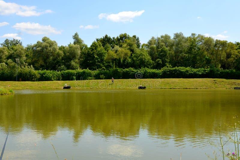 Giumenta di Aita del lago Paesaggio rurale tipico nelle pianure della Transilvania, Romania immagini stock