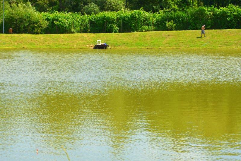 Giumenta di Aita del lago Paesaggio rurale tipico nelle pianure della Transilvania, Romania immagine stock