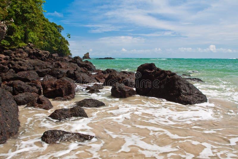 Giungla rocciosa della spiaggia e della linea costiera vicino al mare fotografia stock libera da diritti