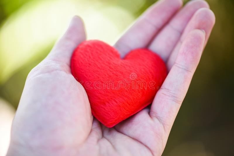 Give Love Man holding small red Heart in hands for love Valentines day Donate Help Give love warmth take care royalty free stock images