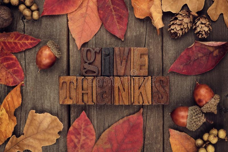 Give Thanks letterpress with frame of autumn leaves over wood. Give Thanks spelled with wooden letterpress with frame of autumn leaves over a rustic wood royalty free stock photography