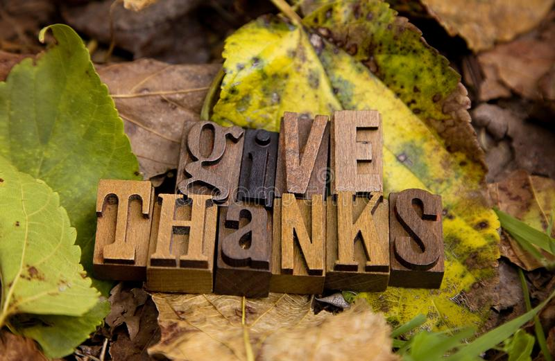 Give Thanks Spelled in Type Set. On a bed of dried leaves stock images