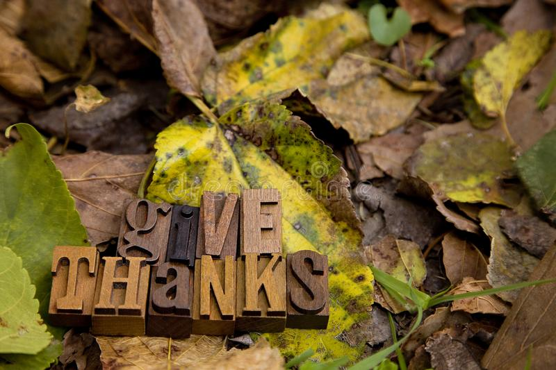 Give Thanks Spelled in Type Set. On a bed of dried leaves stock image
