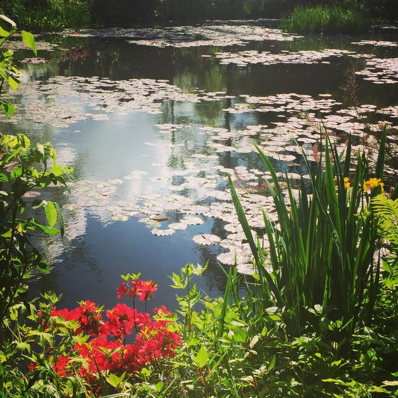 Giverny stock photography