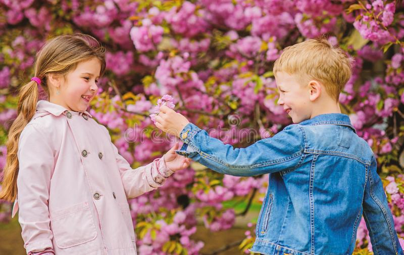 Giving all flowers to her. Surprising her. Kids enjoying pink cherry blossom. Romantic babies. Couple kids on flowers of stock images