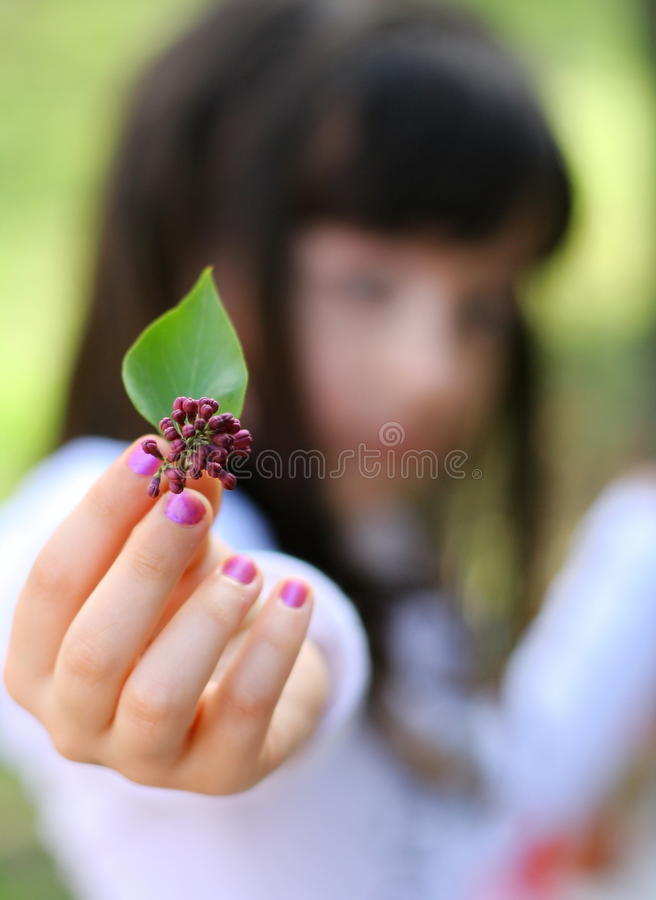 Download Giving a flower stock image. Image of lilac, hand, people - 24679009
