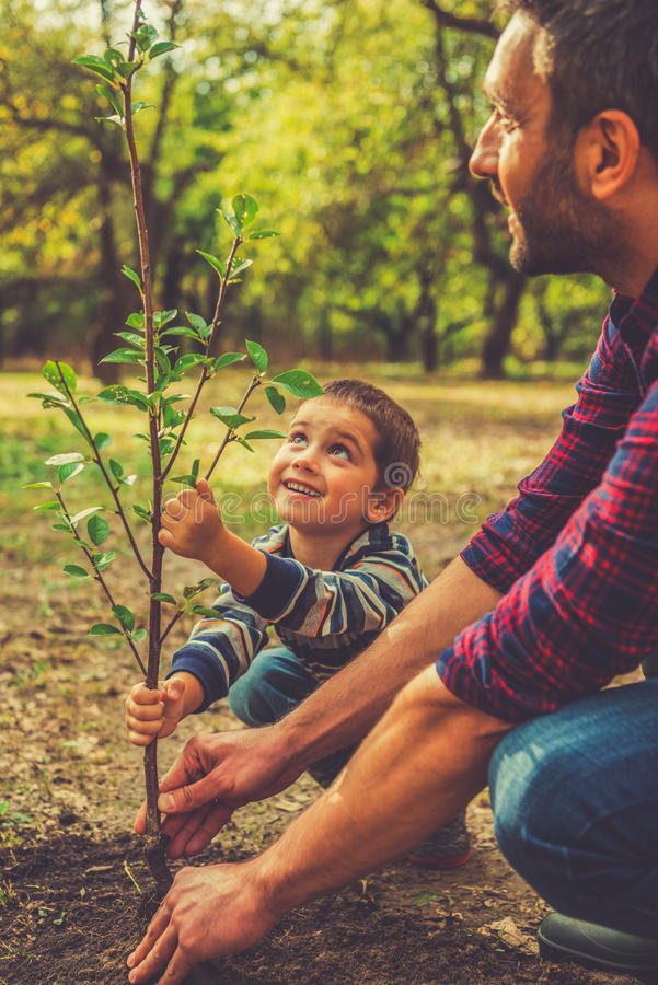 Giving a new life. Cheerful little boy helping his father to plant the tree while working together in the garden royalty free stock images