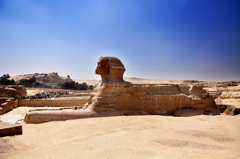Giza è l'immagine completa di profilo della Sfinge nell'Egitto fotografie stock libere da diritti