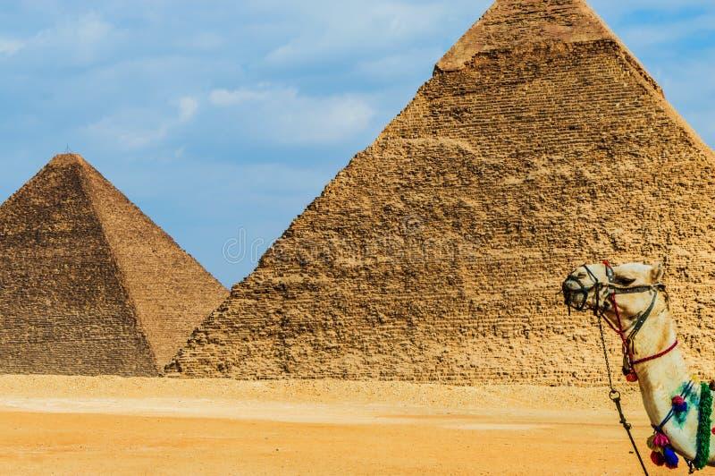Giza ostrosłupy zdjęcia stock