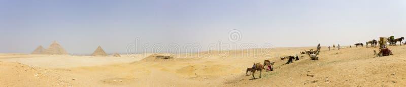 Giza - piramidi, commercianti e cammels fotografia stock